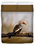 Red-billed Hornbill Duvet Cover