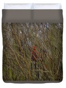 Red Bird Duvet Cover