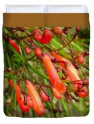 Red Blossoms Of A Firecracker Plant Duvet Cover