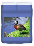 Red Breasted Wood Duck Duvet Cover