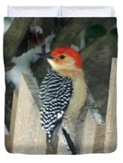 Red Breasted Woodpecker On Fence Duvet Cover
