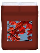 Red Brown And Blue Duvet Cover