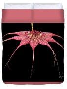 Red Chimney #2 Duvet Cover