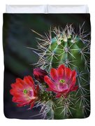 Red Claret Cup Cactus  Duvet Cover