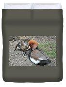 Red Crested Pochard Duck Duvet Cover