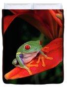 Red-eyed Tree Frog Agalychnis Duvet Cover