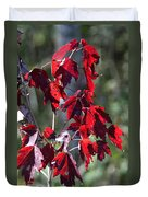 Red Fall Leaves In The Sun Duvet Cover