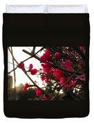 Red Flowers At Sunset Duvet Cover