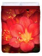 Multiple Red Flowers In Bloom Duvet Cover