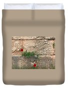 Red Flowers In Ruins Duvet Cover