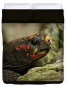 Red-footed Tortoise Duvet Cover