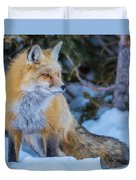 Red Fox At Dawn In Winter Duvet Cover