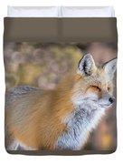 Red Fox In Winter Glow Duvet Cover