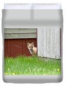Red Fox Kit Peaking Around Old Barn Duvet Cover