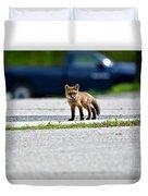 Red Fox Kit Standing On Old Road Duvet Cover