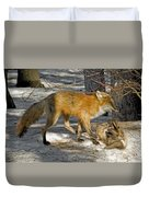 Red Fox Mommy And The Cutest Puppy Duvet Cover