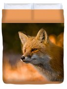 Red Fox Pictures 118 Duvet Cover