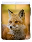 Red Fox Pictures 131 Duvet Cover