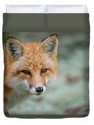 Red Fox Pictures 146 Duvet Cover