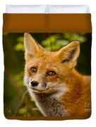 Red Fox Pictures 155 Duvet Cover