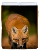 Red Fox Pictures 161 Duvet Cover