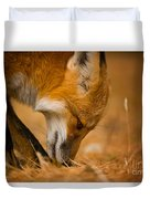 Red Fox Pictures 164 Duvet Cover