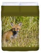 Red Fox Pictures 19 Duvet Cover