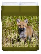 Red Fox Pictures 7 Duvet Cover