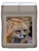 Red Fox Portrait 2 Duvet Cover