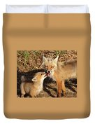 Red Fox Vixen With Pup On Hecla Island In Manitoba Duvet Cover