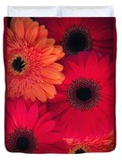 Red Gerbers Duvet Cover