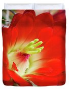 Red Hedgehog Duvet Cover