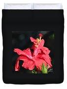 Red Hibiscus Square 2 Duvet Cover