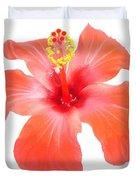 Red Hibiscus Vector Isolated Duvet Cover