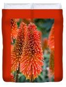 Red-hot Poker Flower Kniphofia Duvet Cover