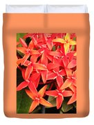 Red Indian Flowers Like Sunshine - Macro Photography Duvet Cover