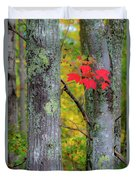 Red Leaves Duvet Cover by Gary Lengyel