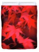 Red Leaves In Fall  Duvet Cover