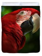 Red Macaw 2 Duvet Cover