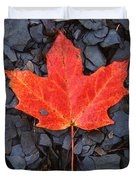 Red Maple Leaf On Black Shale Duvet Cover