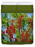 Red Kangaroo Paws At Pilgrim Place In Claremont-california- Duvet Cover