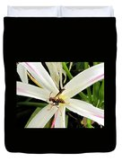 Red Paper Wasp And Spider Lily 000 Duvet Cover