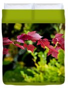 Red Red Maple Leaves Duvet Cover