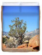 Red Rock Canyon Nv 3 Duvet Cover