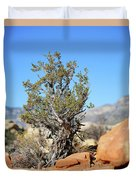 Red Rock Canyon Nv 4 Duvet Cover