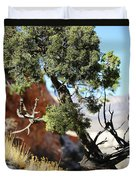 Red Rock Canyon Nv 5 Duvet Cover
