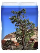 Red Rock Canyon Nv 9 Duvet Cover