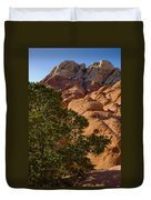 Red Rock Textures Duvet Cover