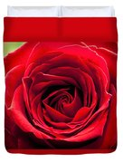 Red Rose Colour Isolated On A Green Background. Duvet Cover