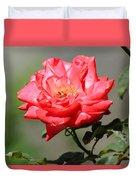 Red Rose On A Bush Duvet Cover